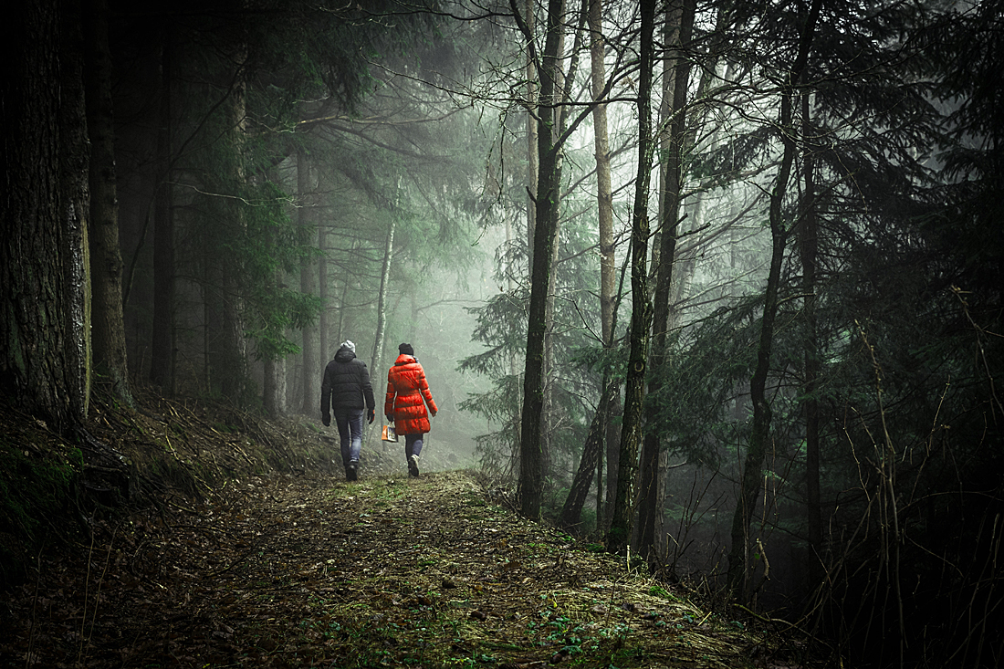 Two hikers in a foggy forest