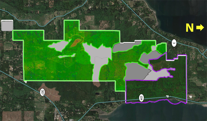 Bright green: areas which can be saved