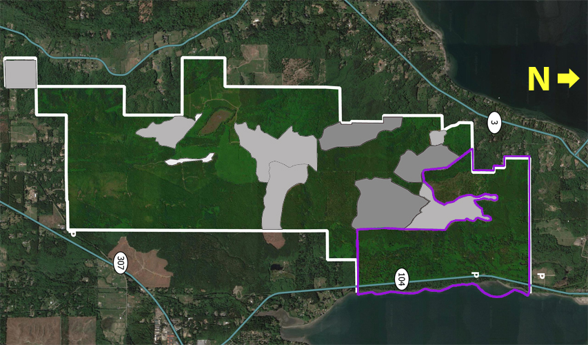 Darker grey: areas already permitted for clearcut.